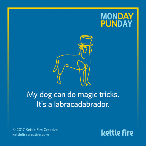 Best puns, labracadabrador puns, jokes humor funny, Kettle Fire Creative puns 35 Puns That Will Make Your Day kf social Punday labra 1