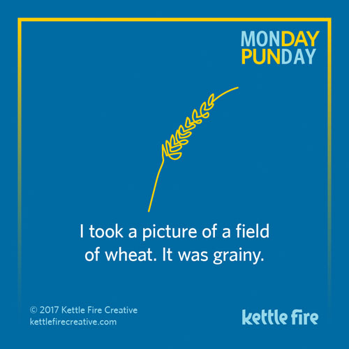 Best puns, wheat puns, jokes humor funny, Kettle Fire Creative puns 35 Puns That Will Make Your Day kf social Punday wheat 1