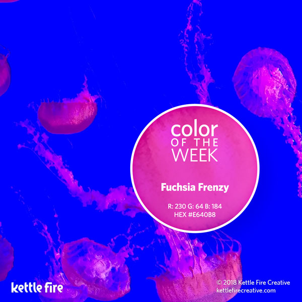 color inspiration, color ideas, colors from nature, RGB codes, HEX codes, Kettle Fire Creative blog, color of the week, fuchsia frenzy color inspiration Color Inspiration: 12 Stunning Shades to Spark Your Creativity cotw fuchsiafrenzy