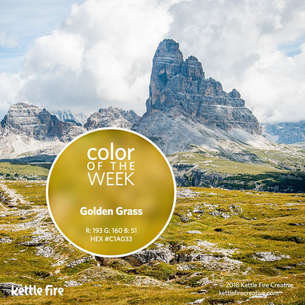 color inspiration, color ideas, colors from nature, RGB codes, HEX codes, Kettle Fire Creative blog, color of the week, golden grass color inspiration Color Inspiration Part II: 12 More Hues to Stir the Senses cotw goldengrass