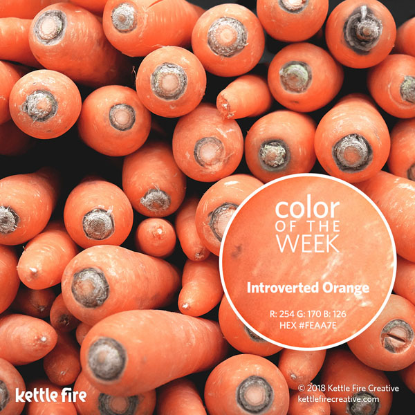 color inspiration, color ideas, colors from nature, RGB codes, HEX codes, Kettle Fire Creative blog, color of the week, introverted orange color inspiration Color Inspiration Part II: 12 More Hues to Stir the Senses cotw introvertedorange