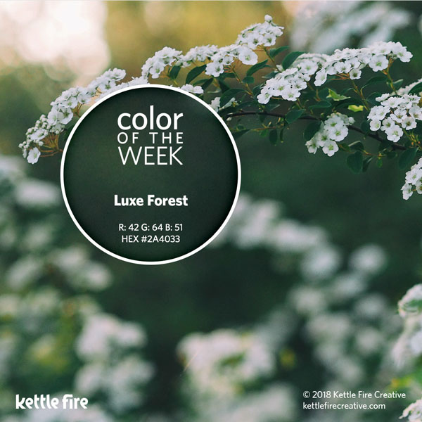 color inspiration, color ideas, colors from nature, RGB codes, HEX codes, Kettle Fire Creative blog, color of the week, luxe forest color inspiration Color Inspiration Part II: 12 More Hues to Stir the Senses cotw luxeforest