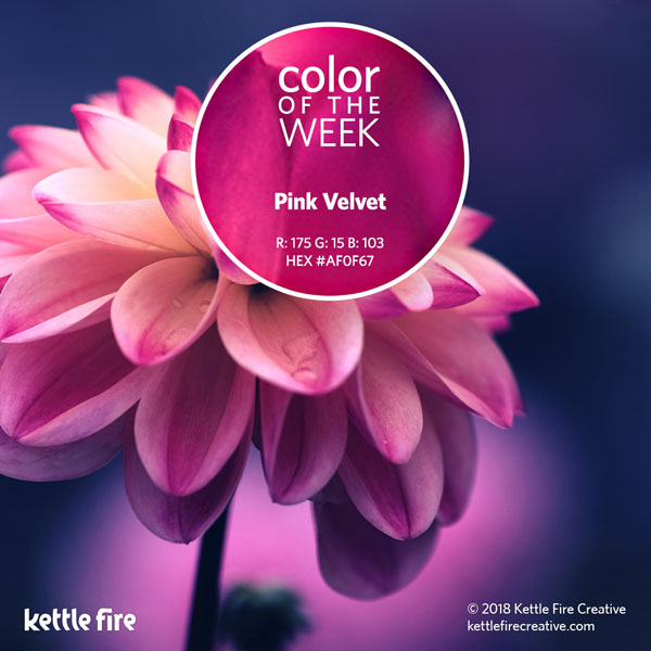 color inspiration, color ideas, colors from nature, RGB codes, HEX codes, Kettle Fire Creative blog, color of the week, pink velvet color inspiration Color Inspiration Part II: 12 More Hues to Stir the Senses cotw pinkvelvet