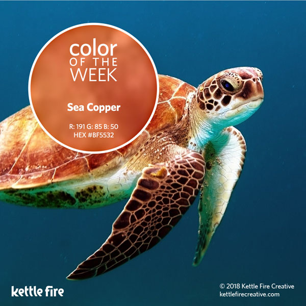 color inspiration, color ideas, colors from nature, RGB codes, HEX codes, Kettle Fire Creative blog, color of the week, sea copper color inspiration Color Inspiration: 12 Stunning Shades to Spark Your Creativity cotw seacopper