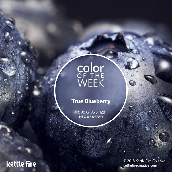 color inspiration, color ideas, colors from nature, RGB codes, HEX codes, Kettle Fire Creative blog, color of the week, true blueberry color inspiration Color Inspiration Part II: 12 More Hues to Stir the Senses cotw trueblueberry