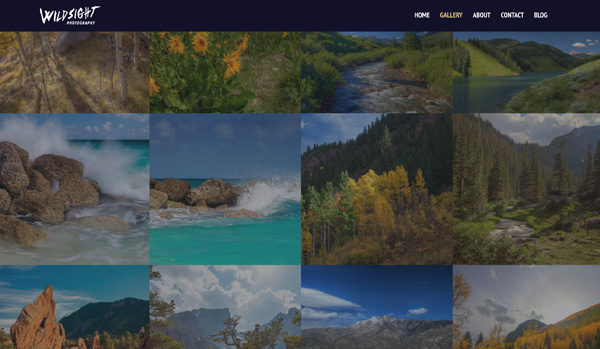 User Experience: 5 Keys to a User-friendly Website by Kettle Fire Creative blog. page speed fast page loading Wildsight Photography user experience User Experience: 5 Keys to a User-friendly Website Screen Shot 2018 10 16 at 2