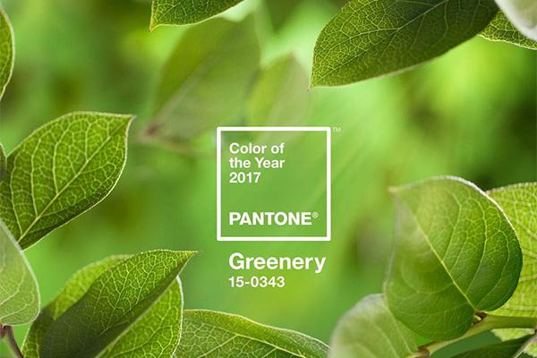 Pantone Color of the Year 2017 Greenery pantone Pantone Color of the Year & What It Means for Marketing Greenery correct