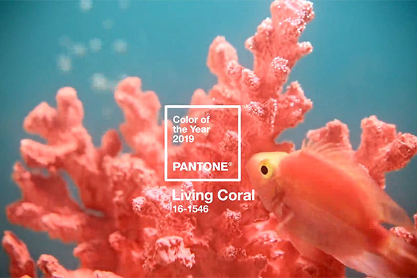 Pantone Color of the Year 2019 Living Coral pantone Pantone Color of the Year & What It Means for Marketing living coral correct