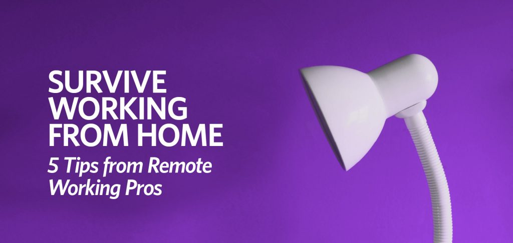 Survive working from home: 5 tips from remote working pros by Kettle Fire Creative working from home Survive Working from Home: 5 Tips from Remote Working Pros work from home fi 1024x486